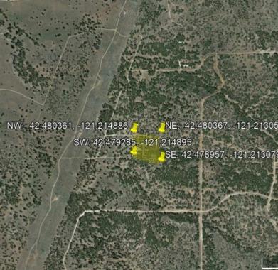 Google Earth Aerial View