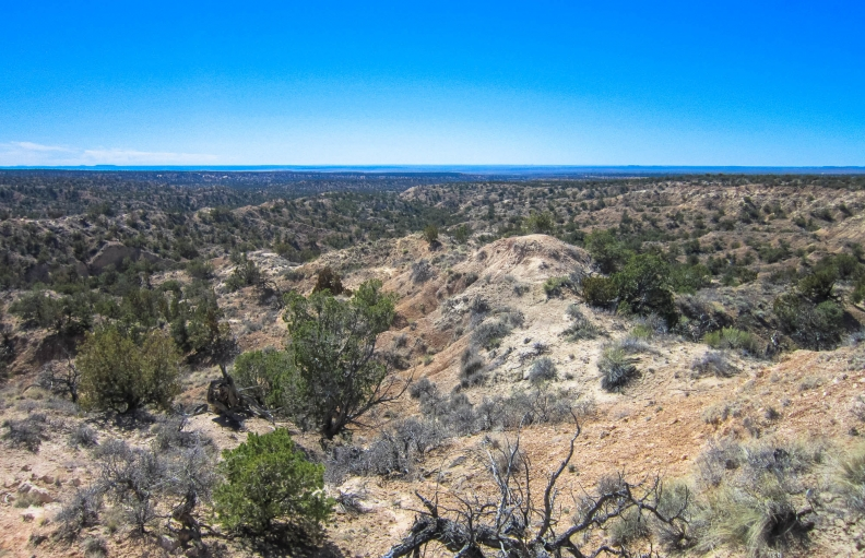 Prepare for Adventure – Remote Getaway – Near Petrified Forest National Park